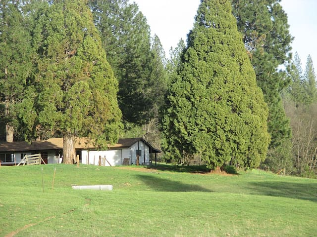 Cozy Ranch Home near Yosemite! - Coulterville - บ้าน