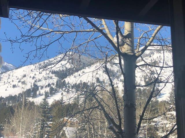 Slopeside Condo/2BR1BA/Teton Village mountain view