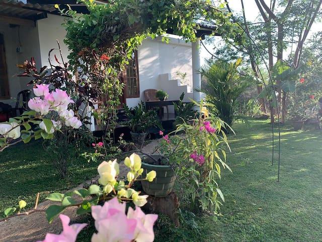 Sigiriya Shan homestay