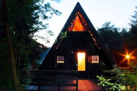 Schönes Nurdachhaus am Waldsee in den Harz-Bergen - Clausthal-Zellerfeld