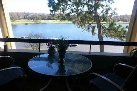 Charming condo looking over lake - Palm Harbor