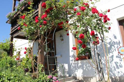 Eksklusiv lejlighed Gustav Klimt