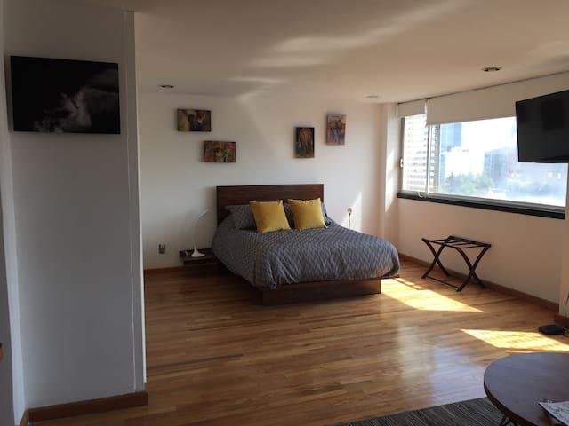 Amplio estudio a dos cuadras del WTC - Mexico City - Lägenhet
