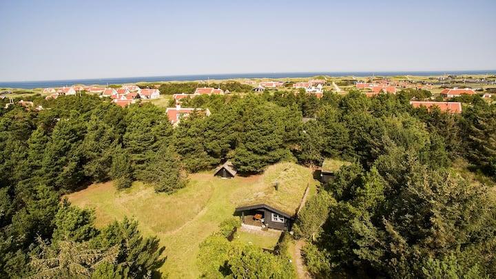 Gl Skagen, classy house on large natural parcel