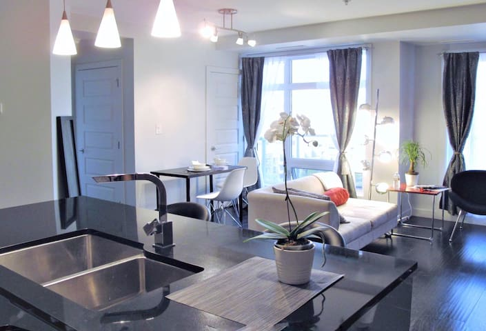 Executive Condo in Heart of Downtown, Free Parking