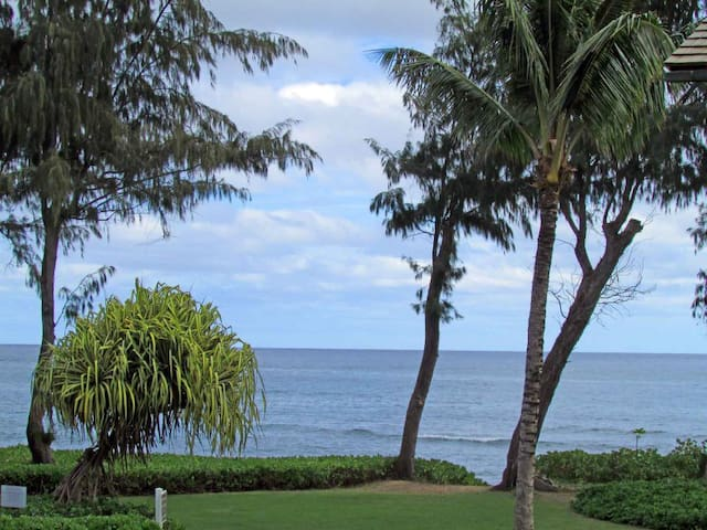 Tropical Sunrises at the Beach with Ocean Views 221