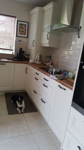 Kitchen  -dog will not be there