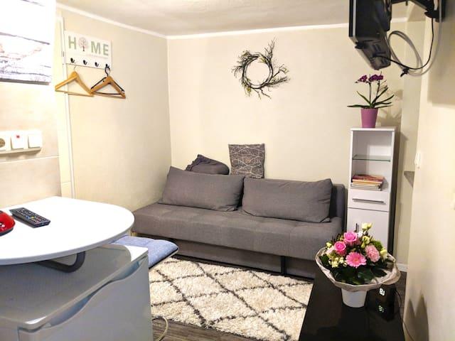 Gemütliches Appartement in Trier, nahe Luxembourg