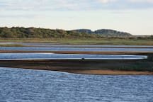 Spend a day kayaking, paddle boarding, picnicking, or birding in the North Shore marshes - both peaceful and active ....