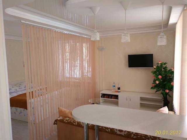 Уютная квартира-студия на 1 этаже