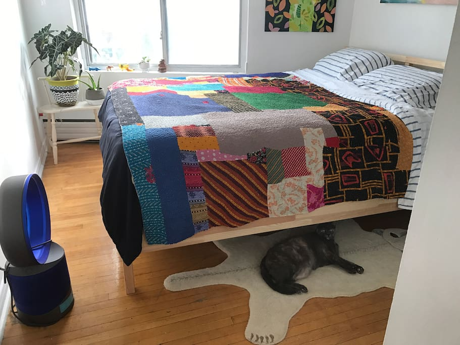 Bedroom (This friendliest Cat won't be there when you come unless you want to take care of her meow)