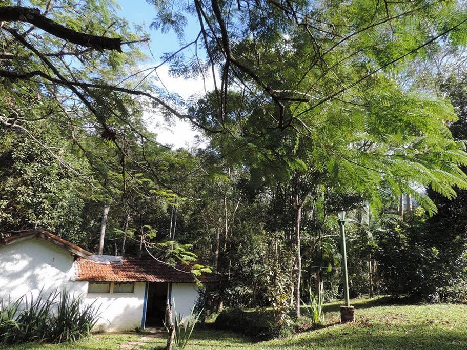 chalé 9 área frontal na foto, parte de traz com varanda com rede, vista para o bosque com o rio e área para fogueira