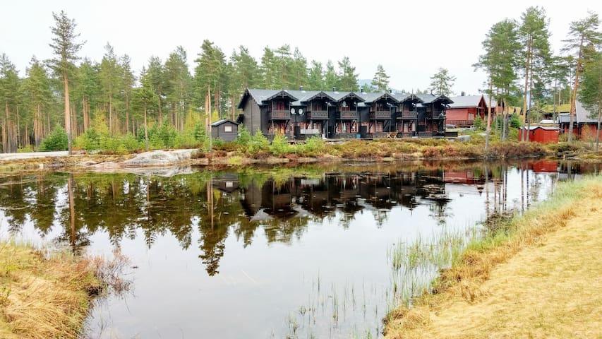 Cozy family home in Vrådal