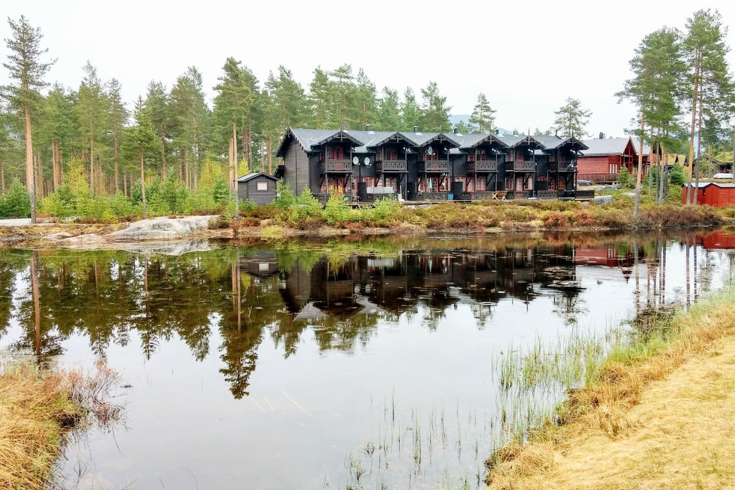 """""""We had a very nice stay at Henrik's place. It was clean and cosy. I would definitely recommend it."""" - Jean Marc *****, August 2017"""