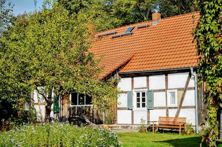 Das Alte Köhlerhaus - mit Sauna - ganzes Haus - Temmen-Ringenwalde - Casa