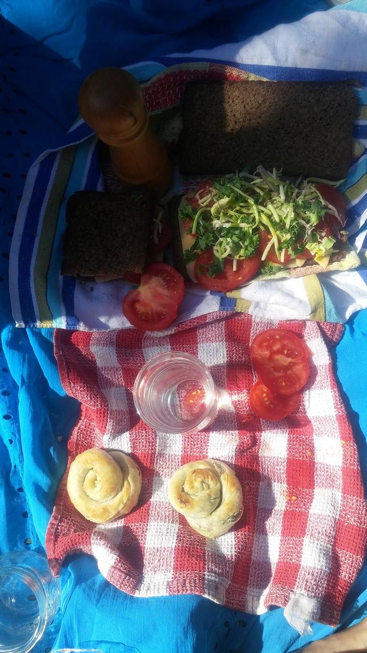 Fresh Organic Lunch Picnic