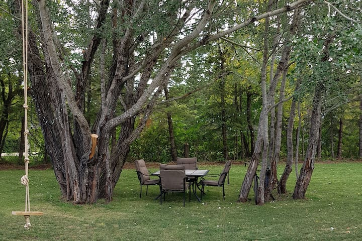 Dine under the trees