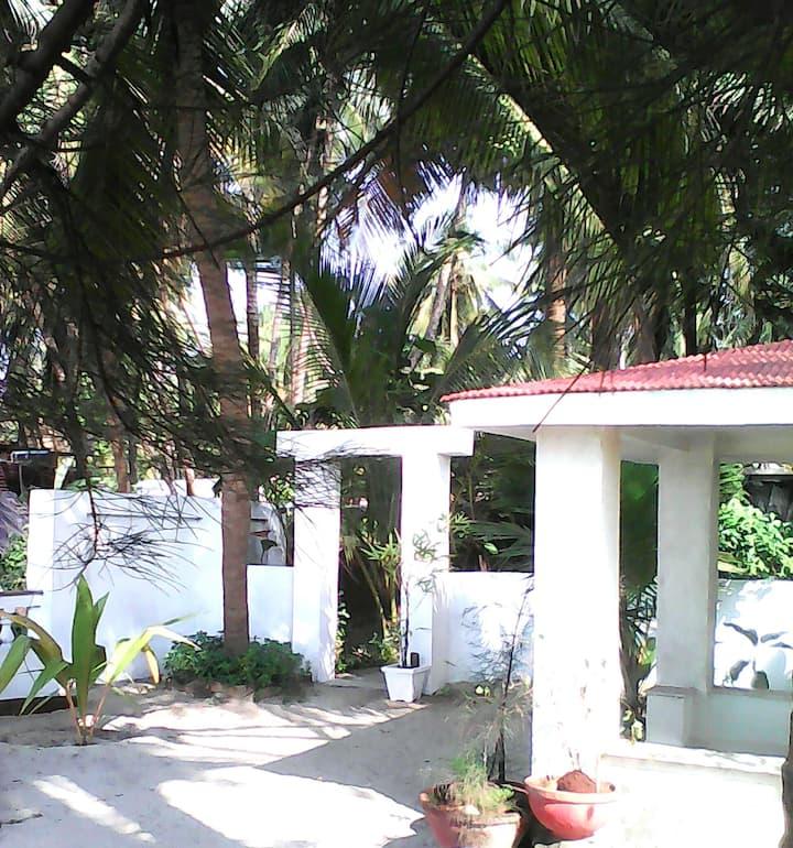 Lone's Beach House.