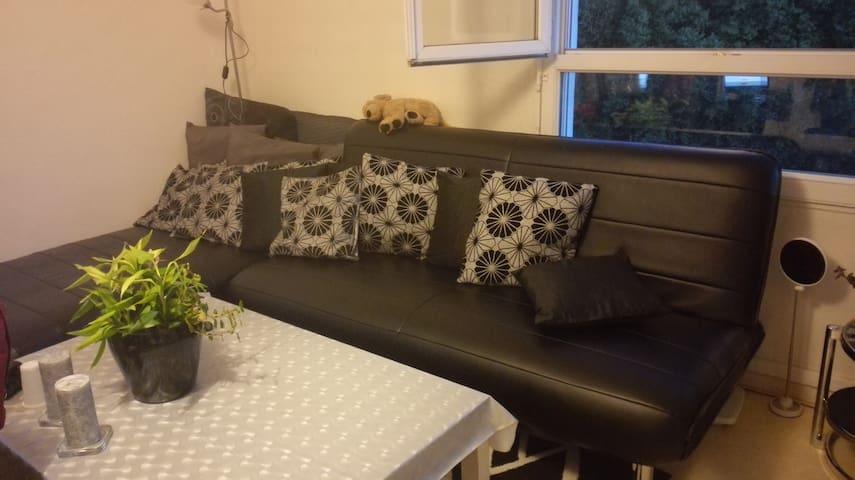 Grand canapé convertible dans mon salon. - Toulouse - Byt
