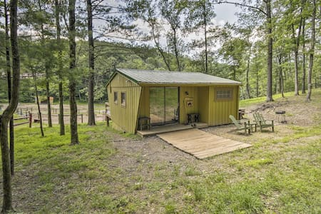 Rustic Cabin w/Ponies & 50 Acres by Raystown Lake!