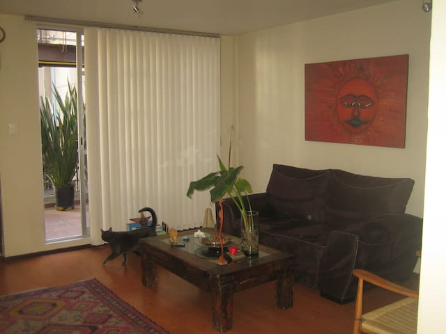 CENTRAL AND COMFORTABLE ROOM - Mexiko-Stadt - Wohnung