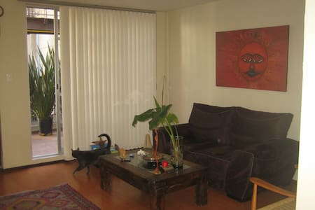 CENTRAL AND COMFORTABLE ROOM - Apartment