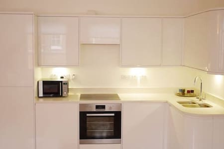 Modern flat in Oxford Circus! - London