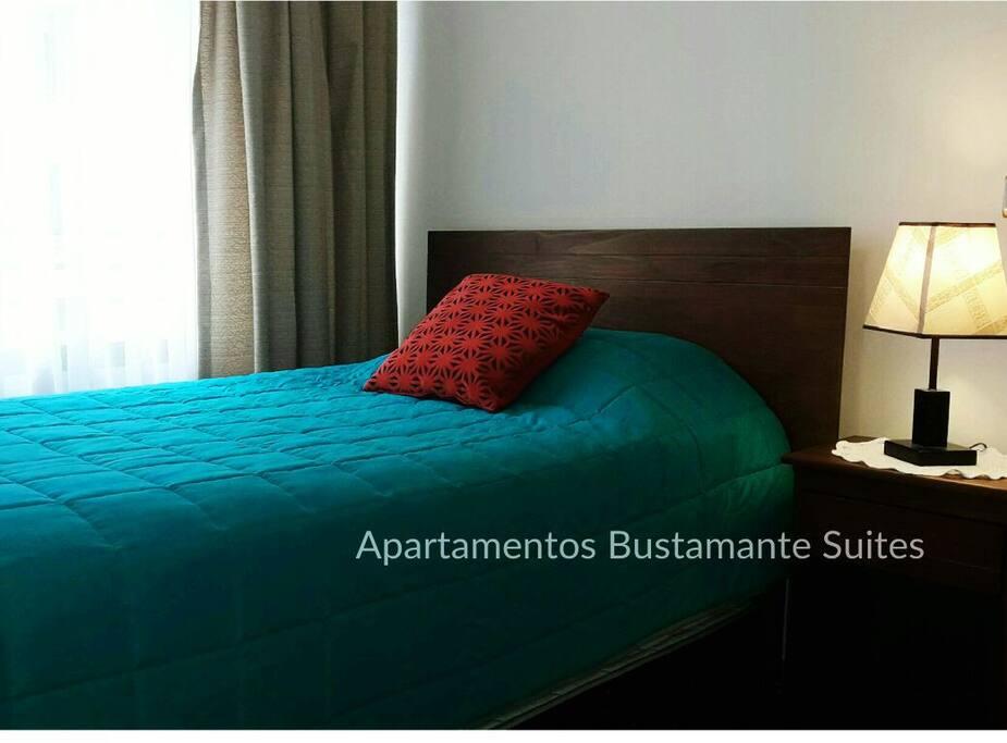 Departamento Privado con Baño en Suite en Santiago de Chile.