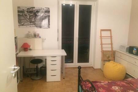 gemütliches Zimmer in der Würzburger Innenstadt - Würzburg - 아파트