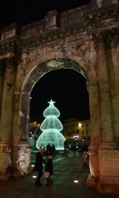 Arch of the Sergii with modern Christmas tree. Photo by Pixsell