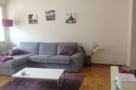 Rooftop Modern Apartment in the Center of Geneva - 日内瓦 - 公寓