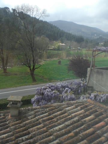 La borie blanche - Saint-Jean-du-Gard - Appartement