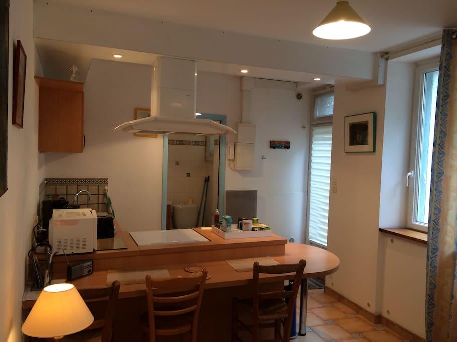 studio 20m2 jardin des plantes apartments for rent in. Black Bedroom Furniture Sets. Home Design Ideas