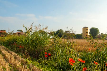 Il Silos Guest House Fregene Maccarese - Maccarese