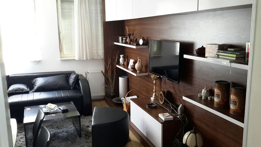 Best location,new furniture,welcome - Pirot - Casa