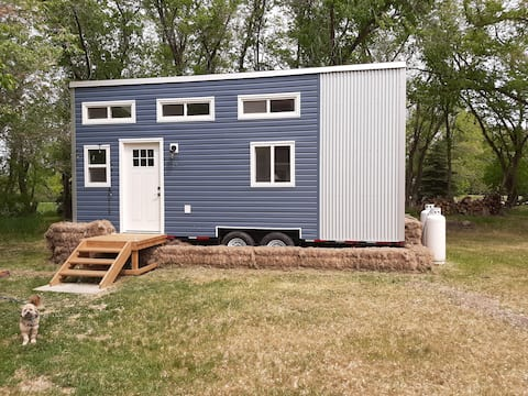 Tiny Blue ~ Cottage/Tiny House