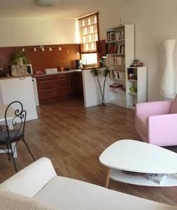 Appart Cosy Albi Centre . - Albi - Apartment