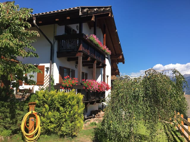 Mansarda soleggiata e panoramica in Val di Fiemme - Carano - Apartemen