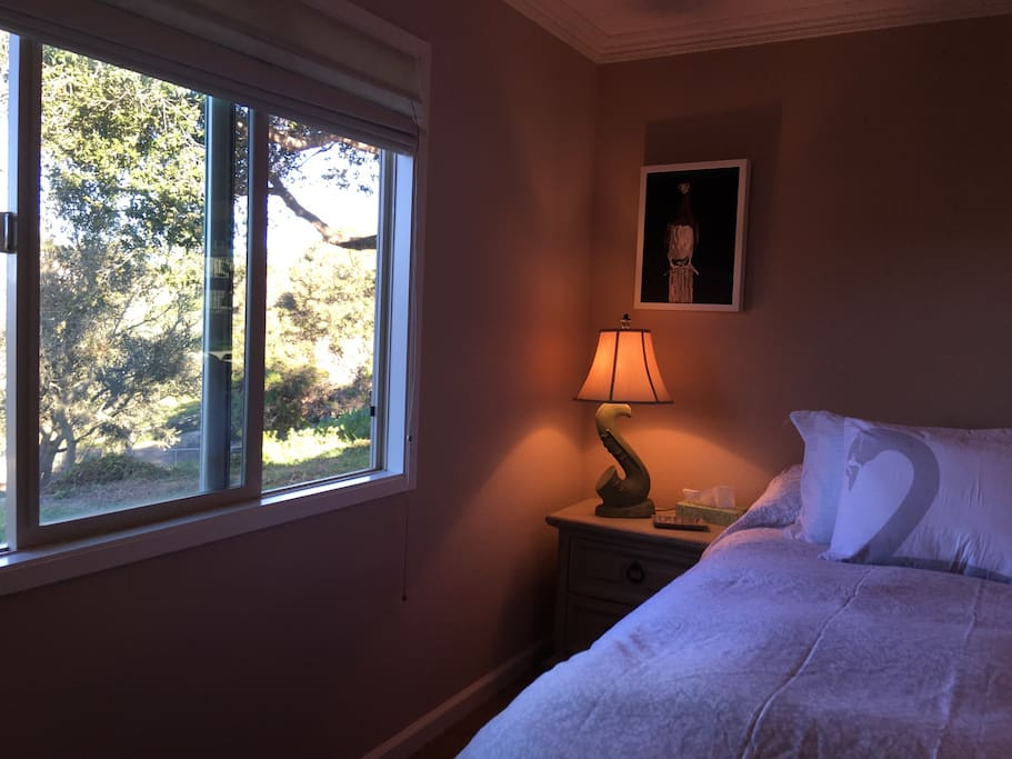 "Peaceful Tranquil view onto back acreage from King size ""bird"" bedroom window."