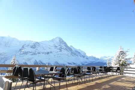 Berggasthaus Waldspitz - Grindelwald