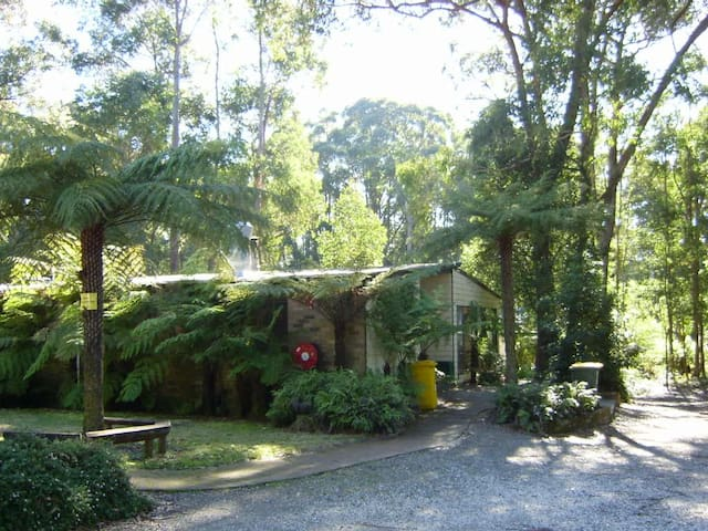 Fitzroy Falls Conference & Adventure Centre. - Wildes Meadow - Villa
