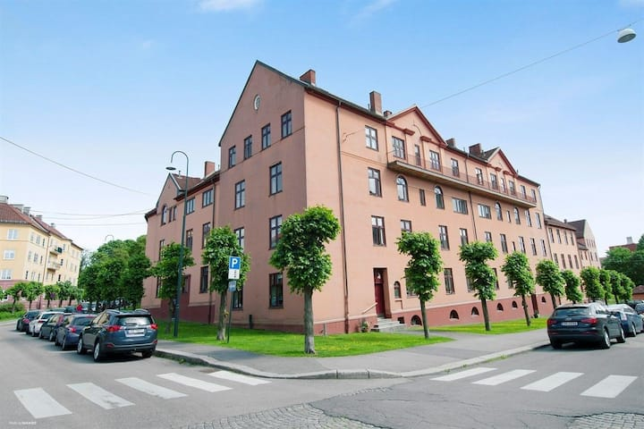 Quiet and cozy apartment in Oslo