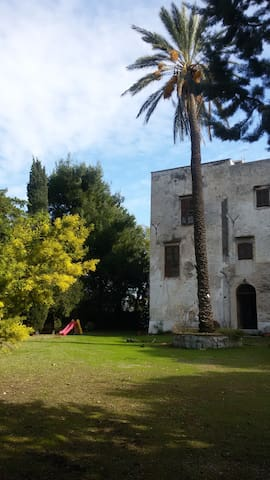 Casa nella Villa del Cilio - パレルモ - 一軒家