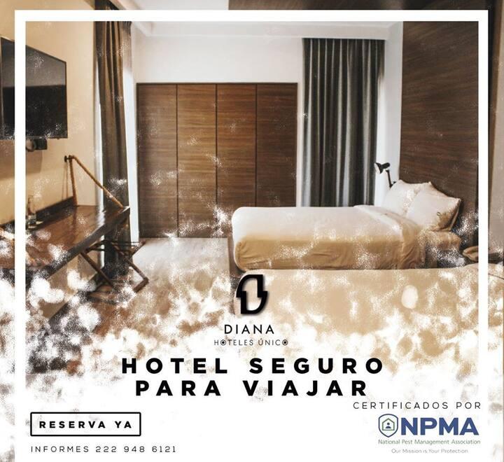 Hotel Diana Único