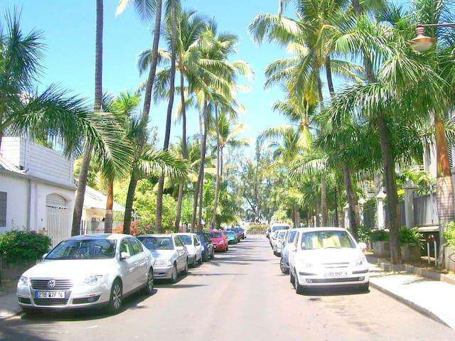 Avenue Henri de Chateauvieux