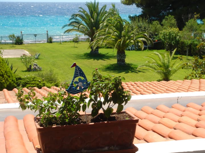 Villa Evi - direkt am Meer in Chalkidiki