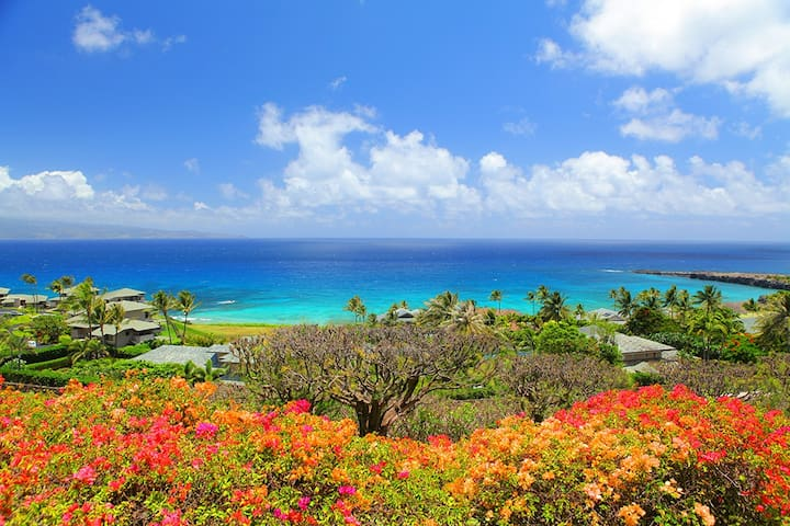 Kapalua Ridge 2012. Aug to Dec Special- 5th Night FREE! Affordable, island style luxury with sweeping ocean views!