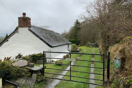 The cosy cottage - Clydfan