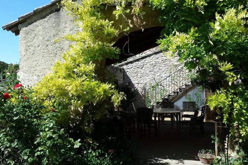 extérieur ombragé vu depuis le jardin haut