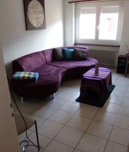 camera spaziosa in zona tranquilla - Bellinzona